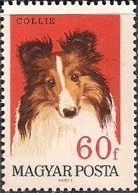 Rough Collie Dog Stamps